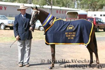 Best Show Pony Gelding Exhibit 'Barrabool Park Bollinger' exhibited by Harper-Purcell Family