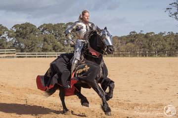 Sir Wouter Nicolai, Netherlands riding Noble Shadow Valiant