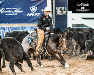 Christopher Corbett and 'Sheza Smart Cat' in the first Go Round of the Non Pro Futurity