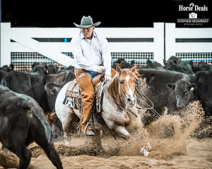 Dean Jones and 'Built For Sin' in the first Go Round of the Non Pro Futurity