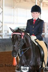Winner of the Childrens Ridden Mare or Gelding over 12.2hh & ne13.2h 'Kolbeach Surprise' exhibited by Baird & Peterson Family