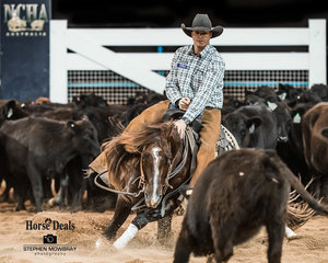 Jamie Seccombe and 'Quicksilver Cat' in the first Go Round of the Open Derby