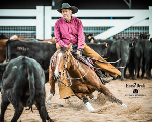 Lindsay Dickens (72 years young and rides everyday) on board 'Spin N Chisum' in the Non Pro Gold Cup