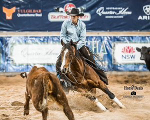 Jamie Creek and 'Turpy's Dual' in the Open Gold Cup Final