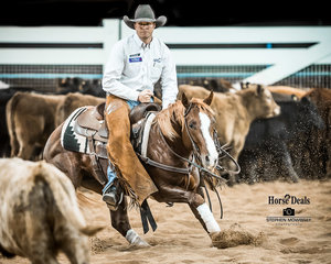 Jamie Seccombe and 'Sugar Rey Badger' mark 207pts to be Reserve Champions in the Limited Open Futurity