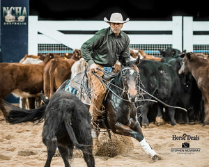 Jim MacCallum and 'Smooth Grove' mark a 215 and are Reserve Champions in the Snafflebit Open Futurity