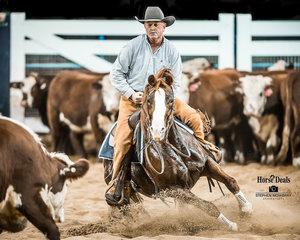 Peter Shumack and 'Fair Lady Flash' mark 215pts in the Destination NSW Non Pro Pinnacle