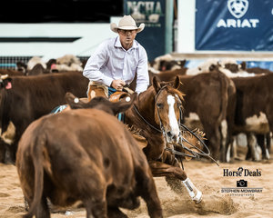Andrew Wrigley and 'GB Mrs Gump' in the Destination NSW Non Pro Pinnacle