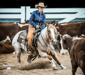 Shelley Ruff and 'Mettalictoy' mark 211pts in the Destination NSW Non Pro Pinnacle for eigth place