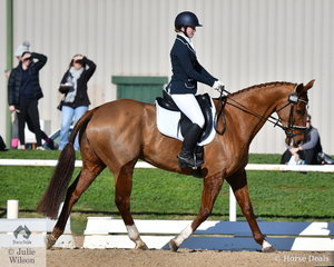 Anna Church and 'Viewbank Icon' hold ninth place in the Off The Track CCI2*-L after the dressage phase at the Melbourne Inbternational Three Day Event today.