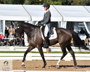 Successful Queensland eventing rider, Mattea Davidson is pictured aboard 'APH Charlie Brown' by Darjo Straights during the dressage phase of the Pryde's Easifeeds CCI4*-L.