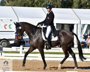 Experienced eventing rider and coach, Sam Lyle is pictured aboard Merran Wallis' Quest for Fame Thoroughbred Gelding, 'Superclass' during the dressage phase of the Pryde's Easifeeds CCI4*-L.