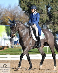 Sarah Clark from South Australia looks elegant aboard her, 'LV Balou Jeanz' by Balou Du Rouet during the dressage phase of the Pryde's Easifeeds CCI4*-L.