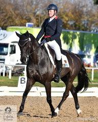 Well performed rider and horseman, Tim Boland is pictured aboard the Waratah Equestrian Pty Ltd's Australian Warmblood, 'Napoleon' by APH Spiegal. They hold ninth place heading in to the cross country phase tomorrow.