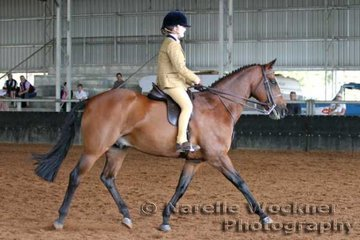 'Willowcroft Embassy' working out in the Show Hunter Mare or Gelding Ridden over 13.2hh & ne 14.2h exhibited by Shaw Family