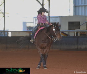 After being passed down through the Kritikou family, and now onto the youngest family member, Paisley Kritikou, Docs Gambling Oak keeps proving how much of the perfect Short Stirrup and Youth horse she is.
