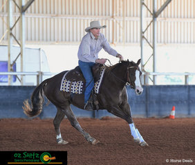 Competing in their firsrt show together John Baker steers his horse Jazzy's Smart N Stylish around the arena in the Beginner Rider class at the Pacific Coast Reining Spectacular held at the Gatton Equestrian Centre, QLD.