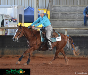 With his ribbons flying in the wind behind him Ruf Tucker and his rider Jo-Ann McConnell race around the arena in the Lachlan Bell Memorial Ride at the Pacific Coast Reining Spectacular.