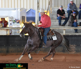 Completeing the winning run in the Rookie Level 1 and Level 2 class was Corey Smith and his horse Oak N Cat.