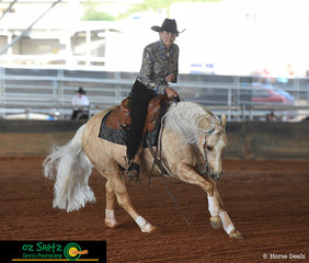 Robyn Ross and Hustlin For Chicks making it look easy in the Non Pro section scoring a 70 in their pattern at the Pacific Coast Reining Spectacular held in Gatton.