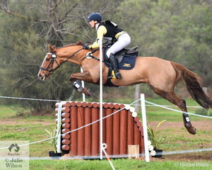 Fleur Barling is pictured making a lovely jump during the Off The track CCI2*-L  aboard her Thoroughbred by Bon Hoffa, 'Wake Me Up'. Their clear cross country run saw them move 35 places up the placings.