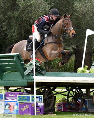 The apple hasn't fallen far from the tree here. Oliver Barrett, son of Prue and Craig Barrett holds first and second place in the Off The Track CCI2*-L Junior. Oliver is pictured aboard second place getter, the Thoroughbred 'Ballyhoo'. He posted a clear cross country run on both horses.