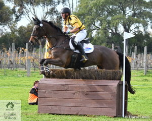 Popular Victorian rider and coach, Will Enzinger posted a clear Off The Track CCI2*-L run riding Yvonne and Ron Barrow's, Corofino II gelding, 'Cairo Xtreme'. They hold ninth place heading in to the  final jumnping phase tomorrow..