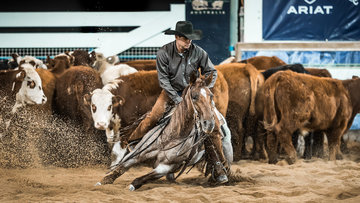 Dean Holden and 'Metallic Reyz' in the Final of the Open Derby