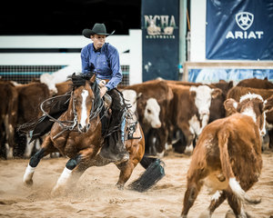 Jamie Creek on his second ride in the Open 'Pinnacle', 'Turpy's Dual' scoring 217pts for a share of 3rd place