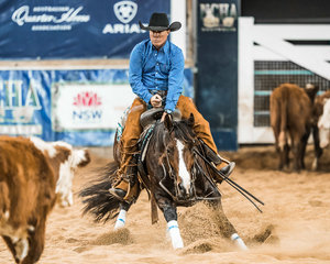 Darren Palmer and 'Purrfect Timing' in the Open 'Pinnacle' event
