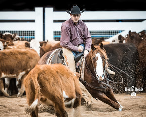 Lloyd Neilsen and 'Pimped Up Cat' score 219.50 pts to win the Non Pro Classic Challenge