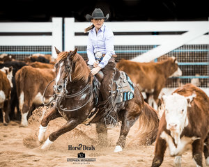 Lynda MacCallum and 'Metallic Storm' with a 213pt run in the final of the Non Pro Derby