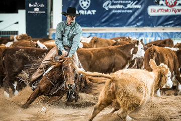 Warwick Screen and 'One Moore Bank Roll' in the SDP Buffalo Ranch Open Futurity Final