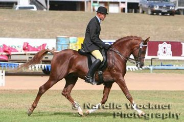Placing 2nd in the English Equitation -Ladies/Gents 'Khadi' ridden by John Downes