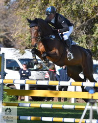 The jumping breeding really shows in this photo of Tim Boland's Horseware Australia CCI3*-L winner, 'Menlo Park'. First after the dressage phase and second yesterday, Tim posted a clear round today aboard the nine year old Eurocommerce Berlin gelding.