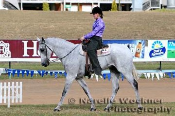 'Zidac' & Hayley Fisher working out for a place in the Open Western Pleasure Rider any age