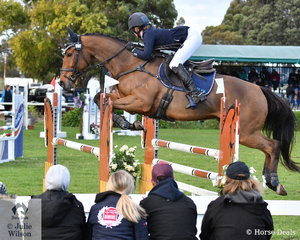 Sophia Landy and her Thoroughbred, 'Humble Glory' are head and shoulders over the spectators during their Pryde's Easifeed CCI4*-L showjumping round.