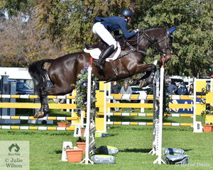 Jessica Rae and her well performed, 'Rascal' by Regardez Moi took ninth place in the Pryde's Easifeed CCI4*-L.