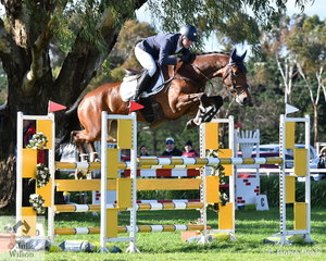 Andrew Cooper is pictured aboard Darren Wilson's 'Oaks Onyx' by One Eye that is clearly displaying his jumping breeding. They continued around the course in this fashion to post a clear and take third place in the Pryde's Easifeed CCI4*-L.