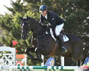 Tim Boland would have been very happy with his trip to Melbourne this year. He is pictured aboard his, 'Napoleon' by APH Spiegel that took second place in the Pryde's Easifeed CCI4*-L.