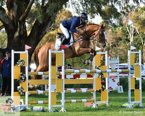 Stuart Tinney is pictured aboard one of the best eventers seen in this country for a number of years. He rode Elisabeth Brinton's eight year old Chin Chin gelding, 'Celebration'. The horse has it all, leading from the outset they added just 2 cross country time penalties to their dressage score to win the Pryde's Easifeed CCI4*-L. The Sydney Olympic Gold Medalist and Rio Bronze Medalist also placed sixth and seventh in the class.