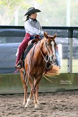 Executing a turnaround to the left, Michelle Norton & Toms No Fool continued to put together smooth, accurate runs to take the wins in both the Senior Horse & Amateur Ranch Riding events