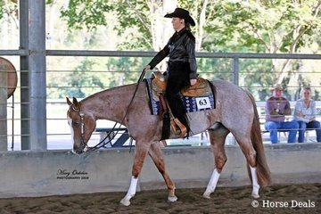 Lynette Fry rode Ceelebrity to a win in the Amateur Western Pleasure. Ridden by Natasha Humphries, Ceelebrity was the champion of the All Age Western Pleasure Spectacular Jackpot Feature event.