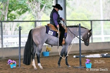 Rosie Webb & Reach For The Roan on their way to winning the Select Amateur Trail class