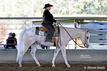 Tracey Phoenix rode her Appaloosa gelding, The Principle, in the Select Amateur Western Pleasure
