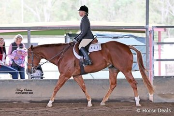 Due to this pair placing consistently in their classes, Gail Lowden & Triandibo Inhecagie took home the buckle for being the High Point Select Amateur of the Spectacular