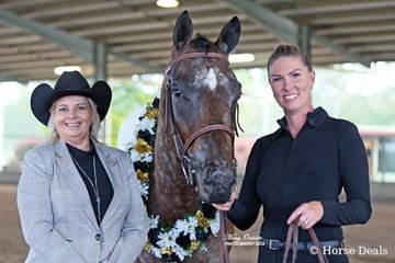 The champion of the All Age Hunter In Hand Spectacular Jackpot Feature was Arnys Blazn Hot Zipper handled by Amy O'Connell