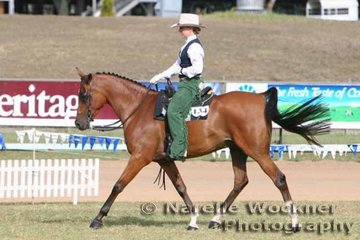 Working out to win Champion Western Pleasure 'Anna's Dakota' ridden by Sharyn Hungerford