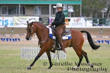 Winner of the Western Horsemanship class & announcing it was their first time to ever compete in the class Shannon Parry & 'Bracknell Bobby B'