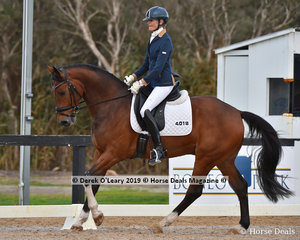 """Winner of the Elementary Championship, """"Florino 48"""" ridden by Sylvia Mclachlan"""
